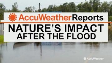Bernie Rayno breaks down Nebraska flood impacts from March