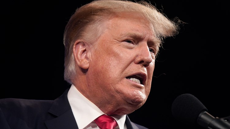 Trump sues niece, NY Times over records behind '18 tax story