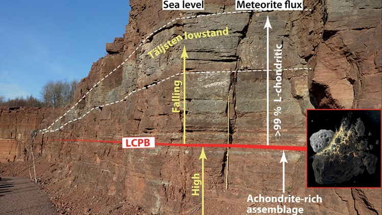 The mid-Ordovician Hällekis section in southern Sweden.