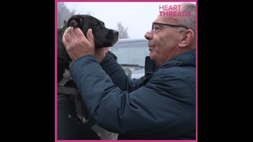 Man reunited with dog after car crash