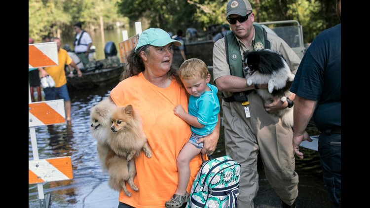 ENC woman charged after taking in animals during hurricane