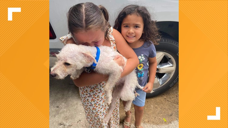 Dog missing for months reunited with family thanks to deputies