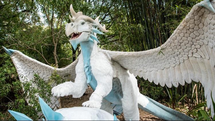 Dragons at Houston Zoo