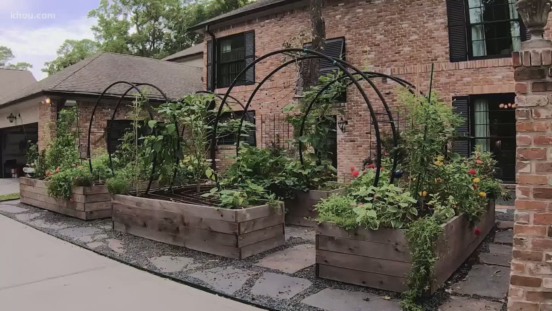 Rooted Garden Offers And Installs Raised Kitchen Garden Beds Wtsp Com