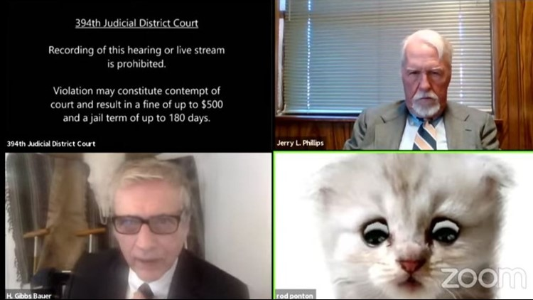 'I'm not a cat': Attorney using a cat Zoom filter explains to judge