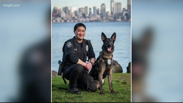 Seattle police dog catches porch pirate