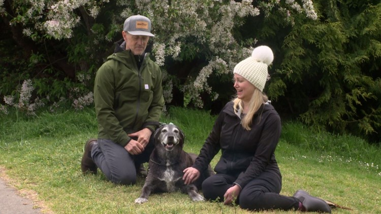 Viral Burien dog finds love after loss