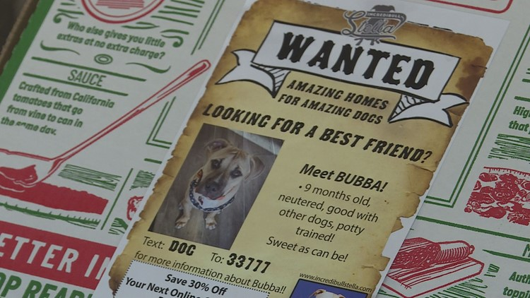Shelter dogs getting more attention on pizza boxes