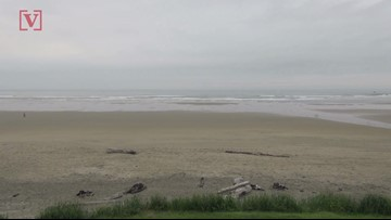 Sneaker Wave' Causes Log To Strike Woman At Oregon Beach, Leaving Her Injured