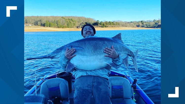 Tennessee man reels in potentially record-breaking fish on Cherokee Lake