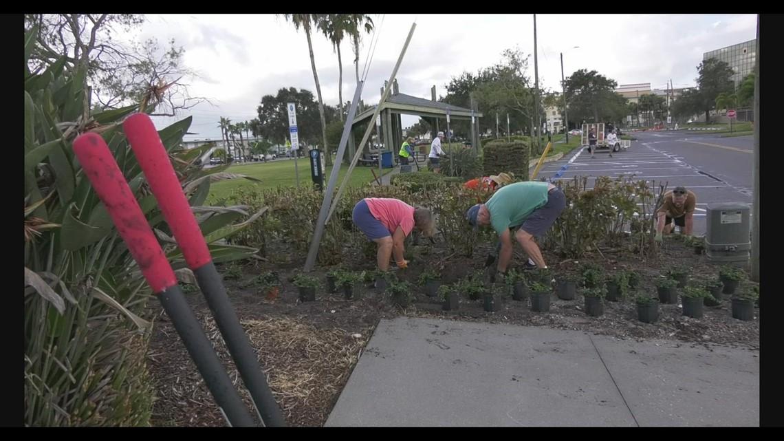 Volunteers help beautify Treasure Island