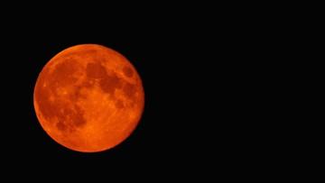 Rare super blood wolf moon eclipse graces the sky