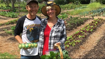 Couple finds healing and therapy in home gardening