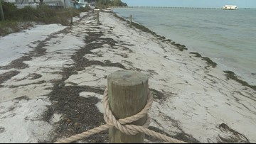 Homeowners block beach, say they are 'fed-up' with bad behavior
