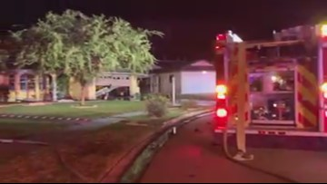 Firefighters respond to Pasco County home, find dogs dead inside