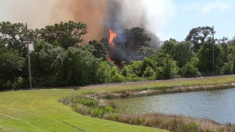 'We're at risk': Pasco neighbors ask officials to help prevent brush fires in their community
