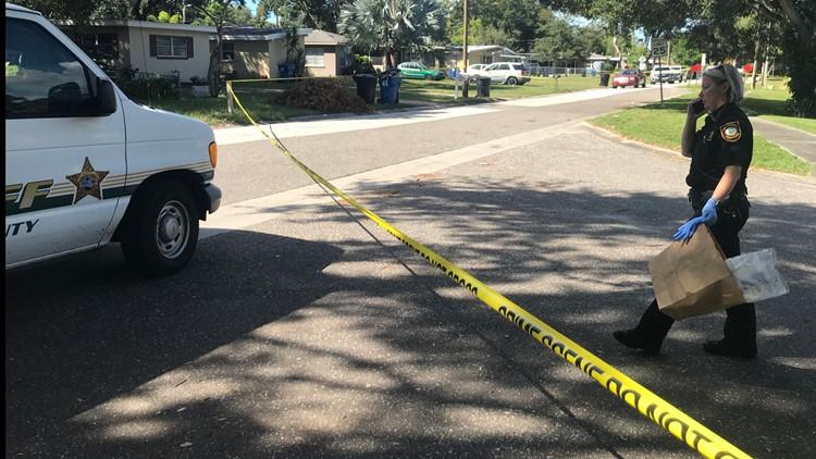 Pinellas County detectives investigating stabbing