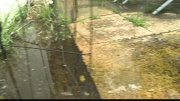 Covered in raw sewage: Neighbors Turn to 10 after dealing with human waste in their yards