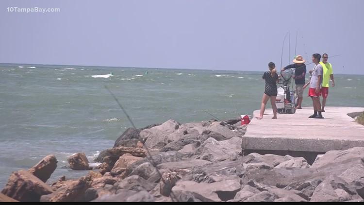 Seafood is safe to eat despite red tide