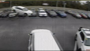 Video: Car flies over dozens of cars at dealership in Citrus County