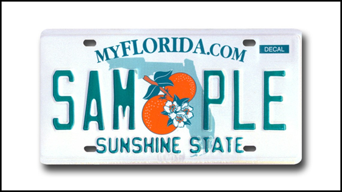 Here's why thieves are stealing your license plates | wtsp com