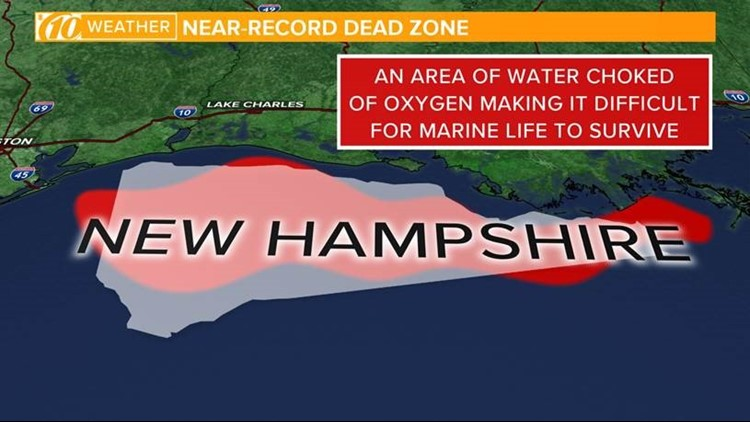 Marine life can't live in the Gulf's growing 'dead zone' -- and it's on zone map washington, zone map pacific, zone 9 map, zone map arkansas, ecosystems with map of mexico, zone map usa, zone map new england, zone map florida, zone map canada, zone map north america, zone map wyoming,