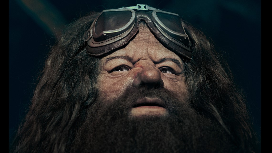 Grab your wands! Universal Orlando reveals new life-like animated Hagrid