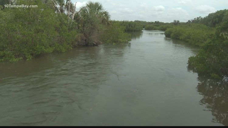 Environmental Protection watches water quality after Piney Point wastewater releases