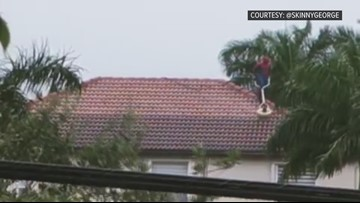 Florida man dons Spider-Man suit, power washes roof | 10News WTSP