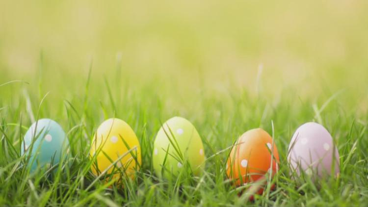 What to do this Easter weekend across the Tampa Bay area