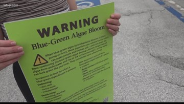 Blue-green 'algae sniffers' search for health impacts on humans