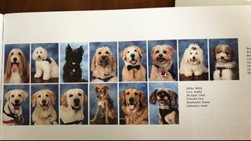 Parkland therapy dogs get page in high school yearbook