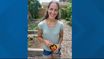 Urban farmers consider new home vegetable garden law groundbreaking