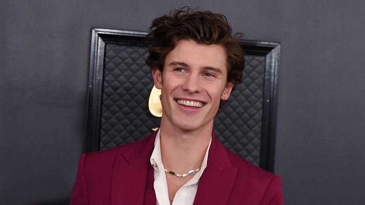 Shawn Mendes 'Wonder: The World Tour' to visit Amalie Arena in 2022