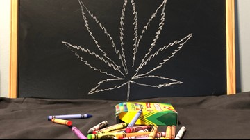 All Tampa Bay school districts working to pass medical marijuana policies after 10Investigates story