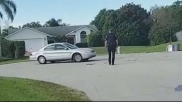 Florida dog bumps car into motion, gets solo trip in reverse