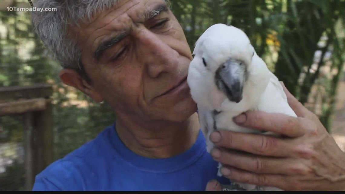 Bird sanctuary gets boost from book during pandemic