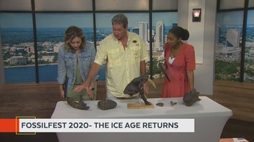 Fossilfest 2020-The Ice Age Returns