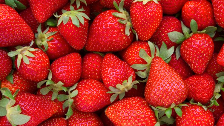 Your guide to the 2021 Florida Strawberry Festival