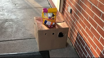 Cat left outside a shelter in taped-up box claws its way out