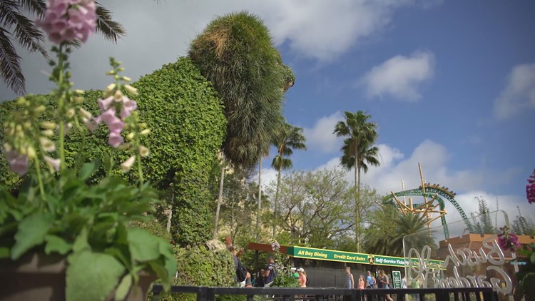 Power outage halts operations at Busch Gardens