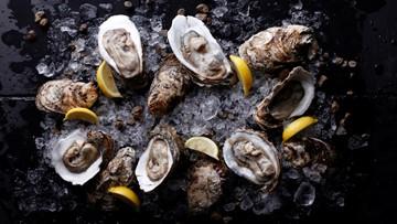 The 5 best seafood restaurants in St. Petersburg