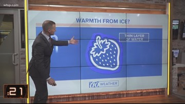 The science behind coating crops with ice during cold spells