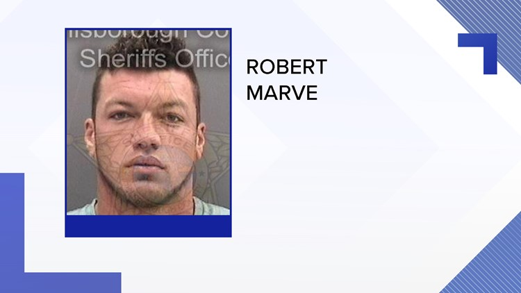 A former Plant High and University of Miami quarterback is facing battery charges after being accused of hitting his ex-girlfriend and stomping on her throat in Key West.