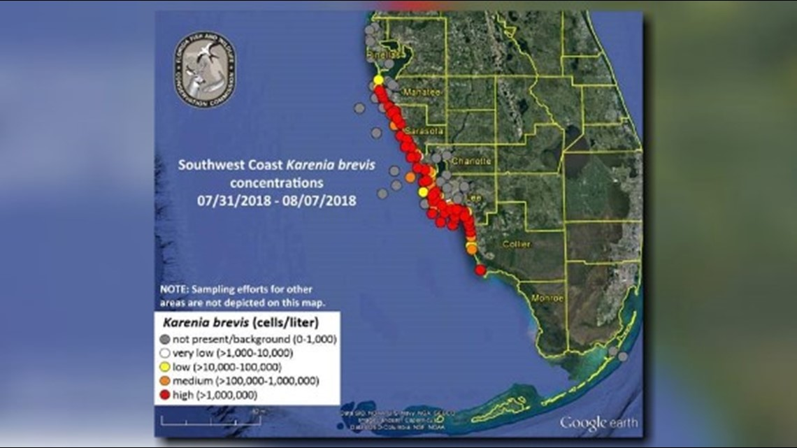 New Map Shows Red Tide Problems Worsening Along Floridas Coast