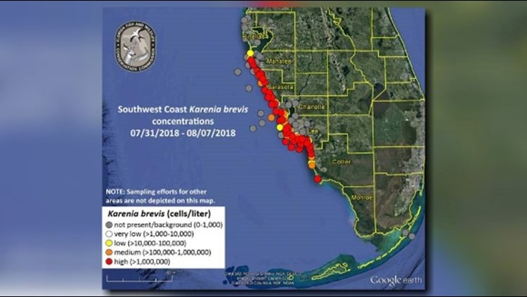 New map shows red tide problems worsening along Florida\'s coast ...