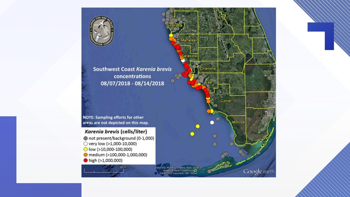 Red Tide Forecast Fwc Releases New Map Respiratory Issues Reported