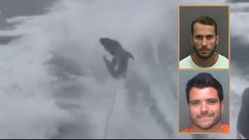 Second man accused of shark-dragging takes a plea deal