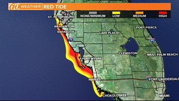 FWC releases new red tide map: Medium concentration reported ... on pass-a-grille florida map, spring hill florida map, south daytona florida map, port orange florida map, dunedin florida map, palm beach gardens florida map, mount dora florida map, west central florida beach map, clearwater beach florida area map, wimauma florida map, st. johns river florida map, barefoot beach florida map, new port richey florida map, east lake florida map, palm beach shores florida map, pompano florida map, treasure island florida map, seaside florida map, orlando florida map, indian rocks florida map,