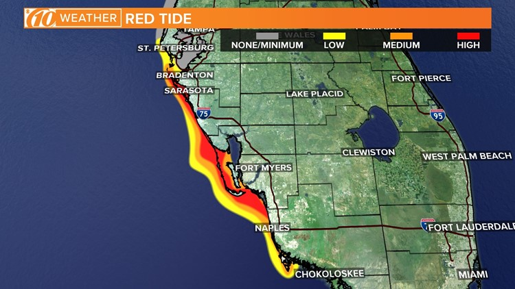 Fwc Releases New Red Tide Map Medium Concentration Reported In Madeira Beach Wtsp